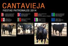 torodigital: Fiestas Patronales Cantavieja 2014