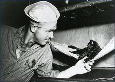 Saipan, mascot of the USS New Mexico, discusses sleeping arrangements with fellow crew member.