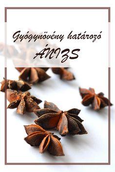 Az Ánizs népies neve: Bécsi kömény, illatos ánizs. Hogyan gyűjtsük az Ánizs gyógynövényt? A növény apró, tojásdad alakú termését használják gyógyászati célra. Júliusban virágzik, termése augusztus-szeptember hónapban szedhető. Herbalism, Place Cards, Witch, Spices, Medical, Place Card Holders, Herbs, Healthy, Herbal Medicine