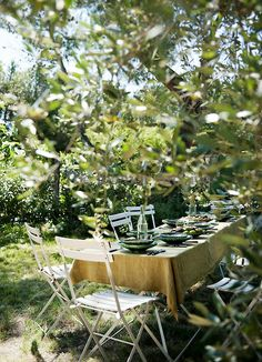 Surrounded by olive trees a table is laid for lunch in the garden Provence
