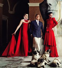 Pugs in a fashion shoot for Valentino.