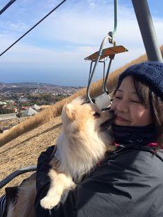 波琉くん/大室山アニマルキングダムにて/大室山のリフトに乗って、ママにチューしちゃいました