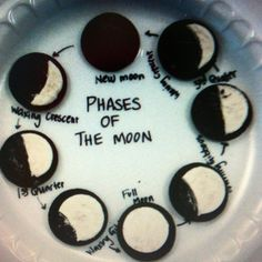 Oreo moon phases. I think I know what I'm doing for my next science project.
