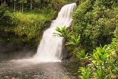 Waterfalls Big Island Visit Hawaii, Big Island, Waterfalls, Road Trip, Outdoor, Outdoors, Road Trips, Outdoor Games, The Great Outdoors