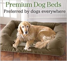 ULTIMATE Comfort  Premium Dog Couch.   We love LL Bean's dog beds!