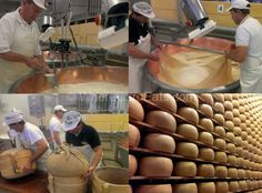 "Parmigiano Reggiano production - ""Reggio Emilia: One Town, All the Best Food of Italy"" by @carly k. Cloutier"