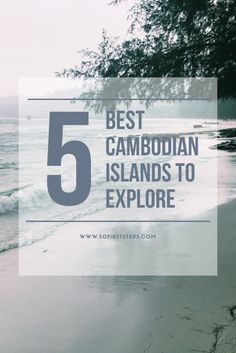 The 5 Best Cambodian