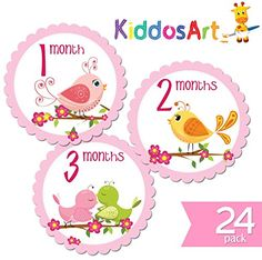 24 Pack of 4 Premium Baby Monthly Stickers By KiddosArt 1 Sweet Bird Sticker Per Month of Your Babys First 2 Years Growth Month Pink Sticker for Baby Girl Milestone Onesie Bodysuit Stickers