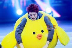 chicken lulu