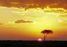 Savane de Mombasa, Kenya Bryce Canyon, Mombasa Kenya, Out Of Africa, Beautiful Sites, Art Plastique, Trip Planning, Safari, Nature, Clouds