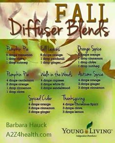 Young Living Essential Oil Fall Diffuser blend recipes. #DIY