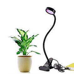 IPUIS LED Grow Light 8W Adjustable 2 Level Dimmable Clip Desk USB Rechargeable Grow Lights Lamp Bulb Clamp Flexible Gooseneck 360 Degree for Indoor Plants Hydroponic Garden Greenhouse