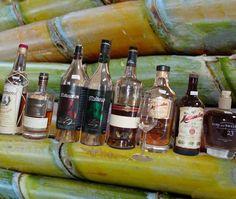Facettenreich und bunt... wie das Zuckerrohr sind die Aromen der verschiedenen Rum's  Im Monat Juli erfahren Sie bei Monnier's in Studen alles über das sagenumwobene Getränk.  http://whiskytime.ch