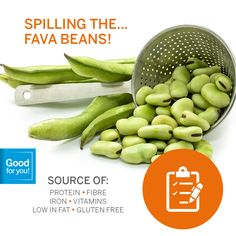 Fava beans, AKA broad beans, pigeon beans and field beans, are both nutritious and delicious.