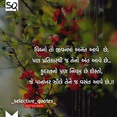 Image may contain: flower, plant, text and nature Photo Quotes, Love Quotes, You Are My Everything Quotes, Motivational Quotes, Inspirational Quotes, Krishna Pictures, Gujarati Quotes, Wall Art Quotes, Animals Beautiful