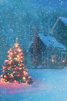 Christmas Tree Ideas - A Light in the Darkness. Beautiful Christmas Tree on a Snowy Evening Winter Land. Christmas Time Is Here, Christmas Scenes, Merry Little Christmas, Christmas Love, Country Christmas, Christmas Pictures, Winter Christmas, Christmas Lights, Vintage Christmas