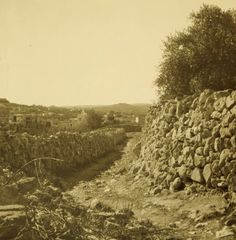 Bethlehem - بيت لحم : BETHLEHEM - The old road to Bethlehem, 1937