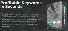 Niche Reaper – Profitable Keywords In Seconds – Forget Time Sucking, Boring Research
