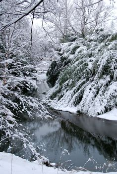 Asheville, NC... most beautiful place I have been :) I hate snow but am in love:)