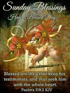Sunday Blessings ~~J Sunday Greetings, Monday Blessings, Morning Blessings, Super Sunday, Good Morning Wishes, Good Sunday Morning, Good Morning Quotes, Friday Saturday Sunday, Sunday Love