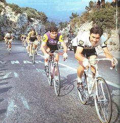 Raymond Poulidor & Eddy Merckx