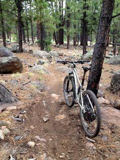 Mountain Biking Flagstaff, Arizona.