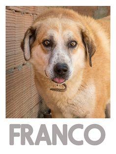 Franco, rifugio di Crocchetta, foto di Maggie Gometz