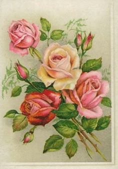 vintage botanical graphics: Roses from birthday card Vintage Cards, Vintage Postcards, Vintage Images, Vintage Flowers, Vintage Floral, Decoupage Printables, Decoupage Vintage, Pictures To Paint, Botanical Art