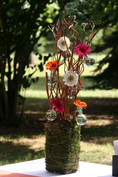 saule tortueux et phalaenopsis compositions de buffet mariage fleurs francefleurs. Black Bedroom Furniture Sets. Home Design Ideas