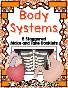 body systems review, human body systems grade 5 learning stations, Muscles
