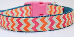 Orange and Pink Chevron Stripe Dog Collar on Etsy, $16.99