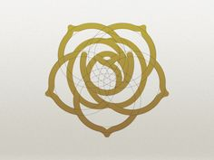 Not quite it...but nice to see in actuality. The Venus orbit as a Rose Logo by Ted Casper.