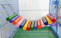 Encontre mais Brinquedos para cachorro Informações sobre Venda quente Pet rato gato coelho Hamster localizador de colorido rede esquilo da ponte de madeira brinquedos 2 pçs/lote grátis frete w2056, de alta qualidade Brinquedos para cachorro de yifeiler em Aliexpress.com