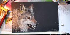 Wolf by WolfHowl10.deviantart.com on @deviantART