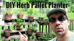 How to Make an Herb Pallet Garden - How To Grow Herbs in a PALLET!