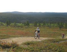 Saariselkä MTB 2013, XCM (01) | Saariselkä.  Mountain Biking Event in Saariselkä, Lapland Finland. Saariselkä MTB on maastopyöräilytapahtuma Saariselän upeassa tunturimaastossa. Lisää tapahtumasta: www.saariselkamtb.fi