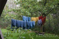 Riihivilla, Dyeing with natural dyes: Wonder of dyeing blue Ihmeellinen sininen väri In English