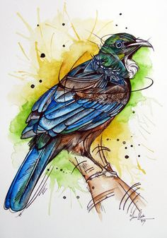 Vibrant Tui watercolour painting by www.fiona-clarke.com