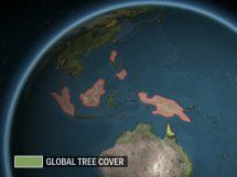 http://www.businessinsider.com/what-earth-would-look-like-if-ice-melted-world-map-animation-2015-2