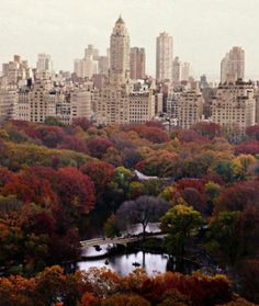 New York I miss you more than anything!