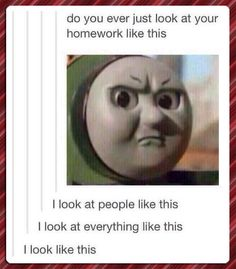 That Particular Look // funny pictures - funny photos - funny images - funny pics - funny quotes - #lol #humor #funnypictures