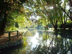 Basingstoke Canal at Crookham Wharf, Ilona Bryan