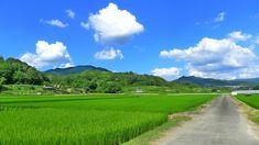 Japan Landscape, Landscape Photos, Landscape Paintings, Japanese Countryside, Beautiful World, Beautiful Places, Wonderful Dream, Guache, Summer Memories