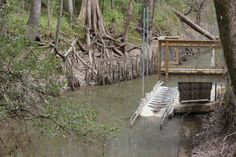 The canoe launch at the Acadiana Park Nature Station in Lafayette, Louisiana.