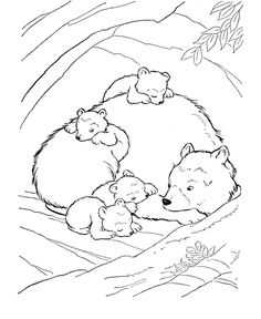 Polar animals coloring page and printables for standing animals ...
