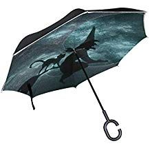 Mr.XZY Beautiful Girl Witch Inverted Umbrella Black Cat Purple Hair Pearl Windproof UV Protection Double Layer Inverted Umbrella with C-Shaped Handle 2010417