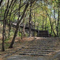 Amazing steps toward Andreyivskyi Uzviz #andreevskiyspusk #kiev #tour #trip #travel #travelukraine #getyourguide #likealocal #loveukraine