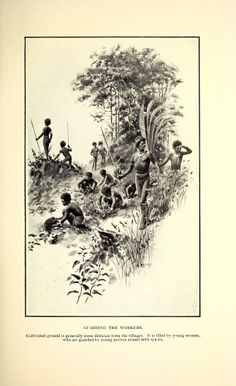 Two years among New Guinea cannibals; - Biodiversity Heritage Library