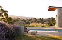 santa-ynez-garden-grasses-drought-tolerant-garden-pamela-burton-gardenista