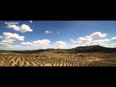 www.aralleida.cat Coneixes les Garrigues?